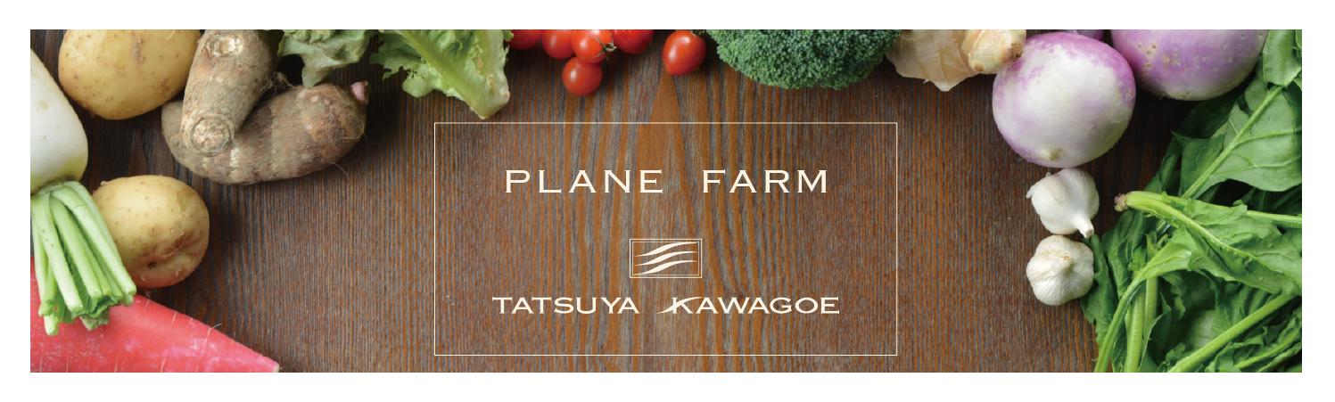 PLANE FARM TATSUYA KAWAGOE ONLINE