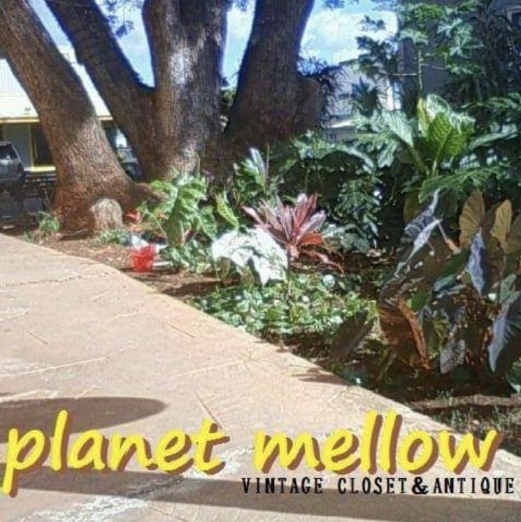 planet mellow