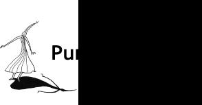 Pure Mode  Shop