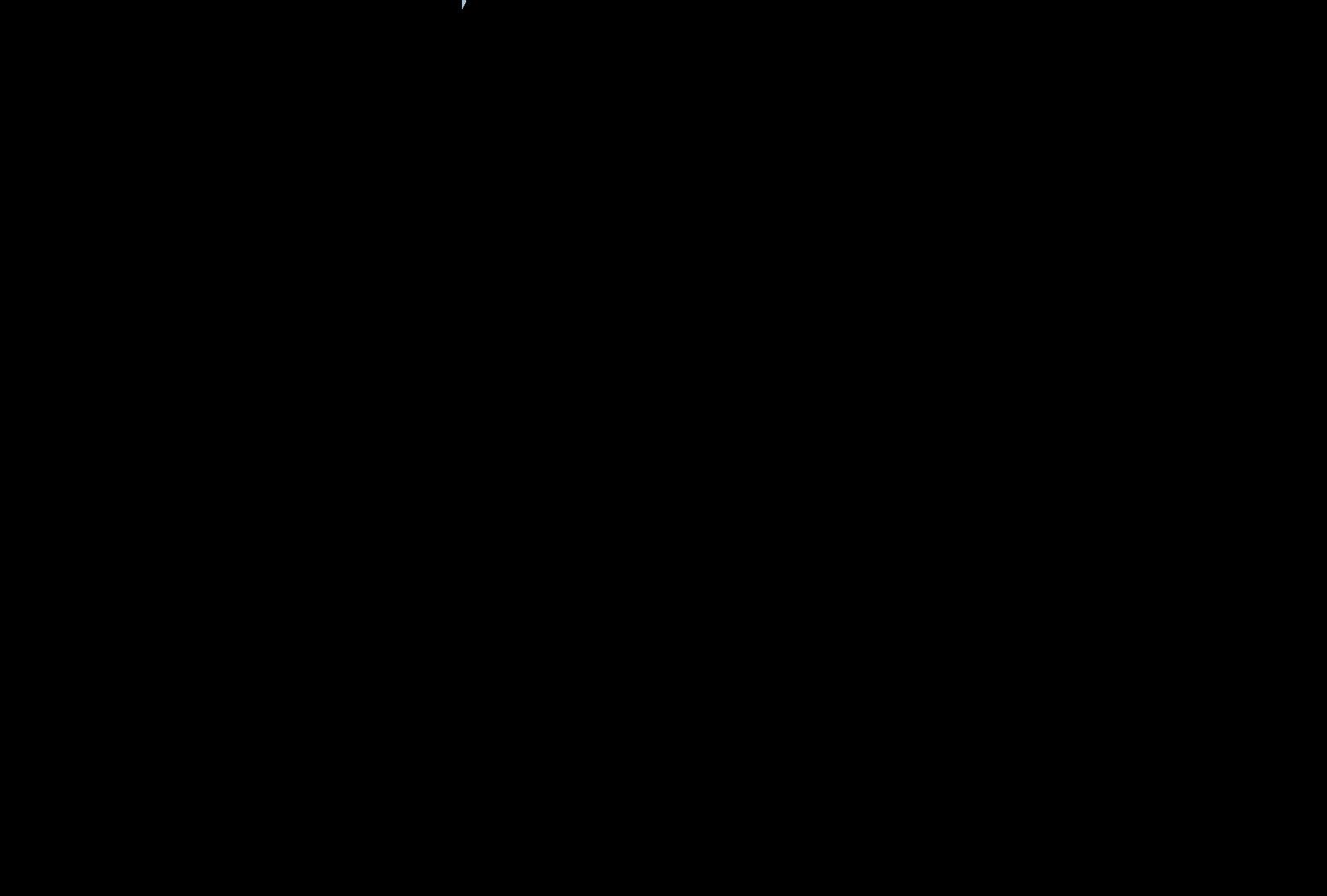basis tokyo