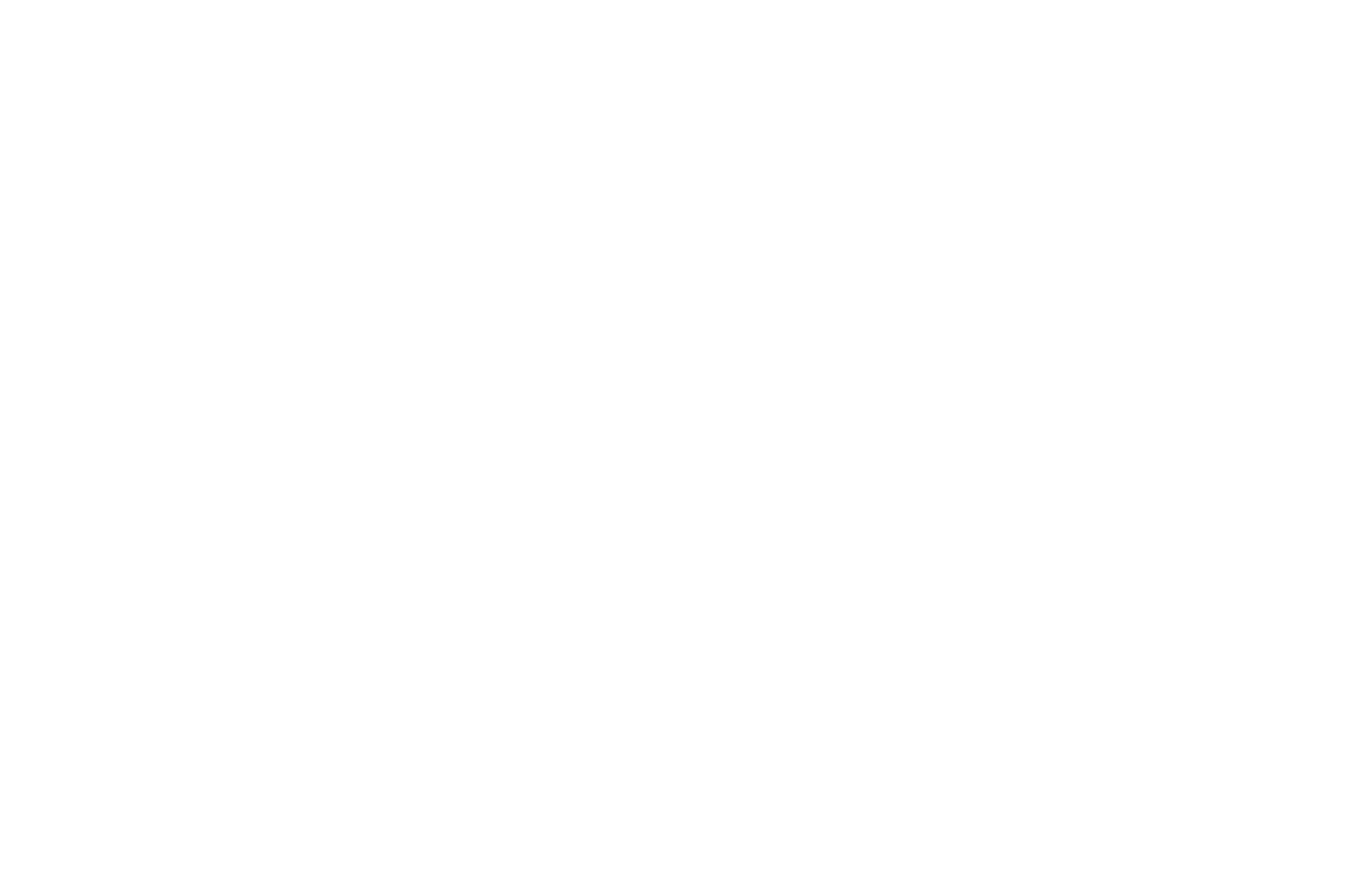 SHOTA MINO     Art & Jewelry