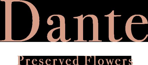 DANTE  -preserved flowers-