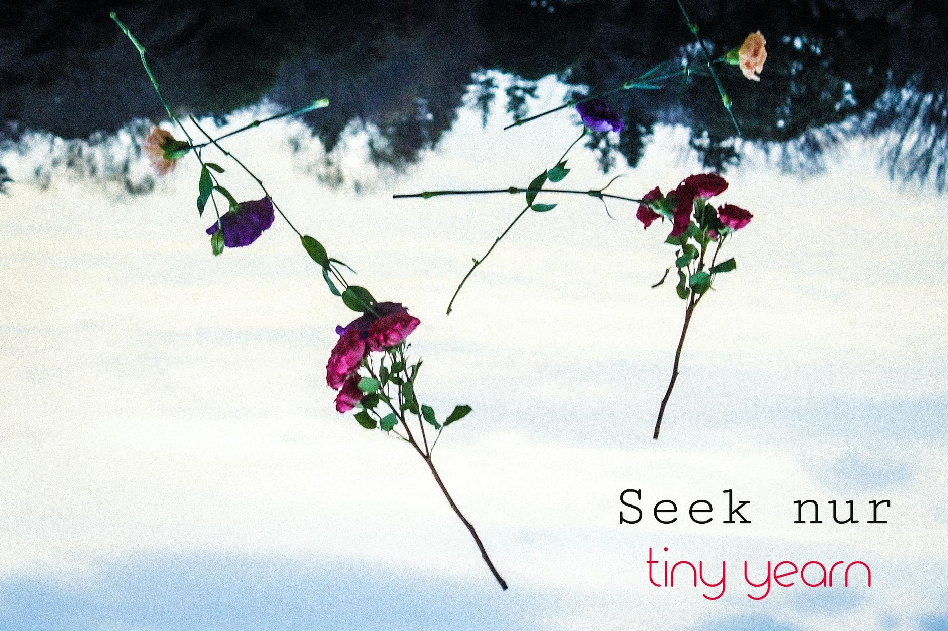 Seek nur・tiny yearn・・・vintage clothes