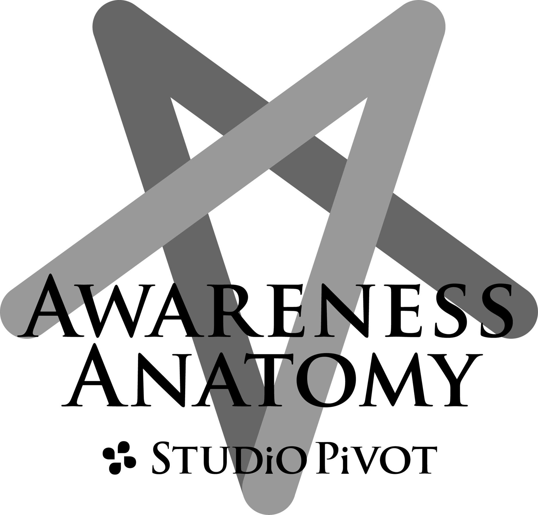 STUDiO PiVOT Net shop
