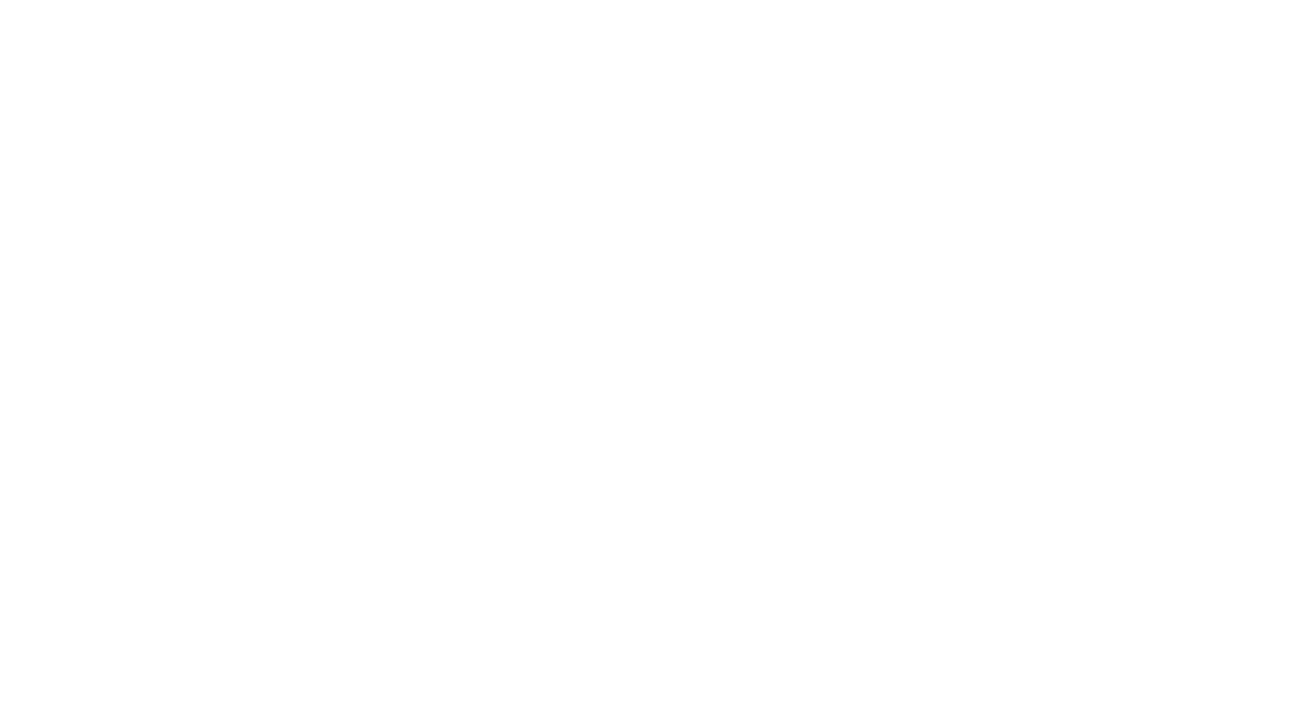 THE SHOP ONLINE