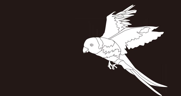 CruXpark