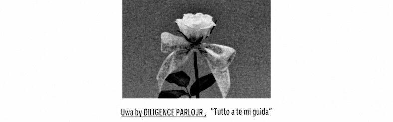 uwa by diligence parlour