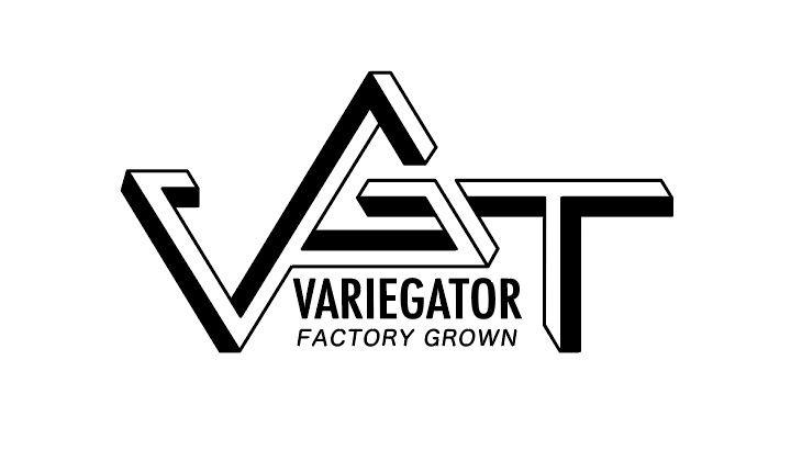 VARIEGATOR