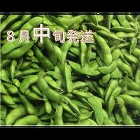 [予約販売] だだちゃ豆 香りと甘味の「甘露」8月中旬発送 7/30締切