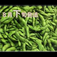 [予約販売] だだちゃ豆 一番人気「白山」又は「晩生甘露」8月下旬発送 8/10締切