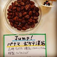 [浅煎り] パナマ Jump! ボケテ渓谷 200g