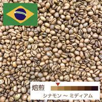 [浅煎り] ブラジル 発酵ナチュラル 100g