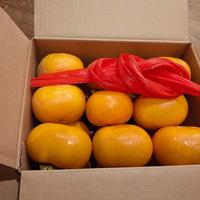 おうちで手作り干し柿セット 【3kg】 送料込み