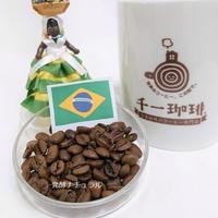 ブラジル 発酵ナチュラル 100g