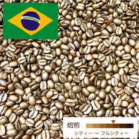 [中深煎り] ブラジル ヴィラーダ 100g