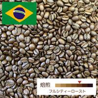 [中深煎り] ブラジル セラード 100g