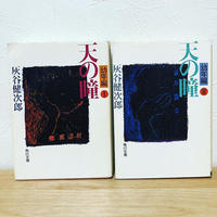 天の瞳 幼年編 Ⅰ・Ⅱ 2冊セット 灰谷健次郎 古本