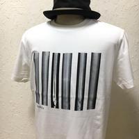 DIVERSITY【2TN-003-WT】