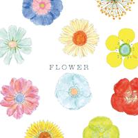 FLOWER 〜もみじ市10周年記念アルバム (V.A.)