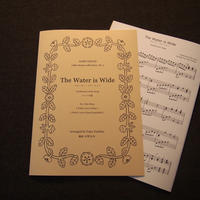 HARP PIECES No.1 [The Water is Wide]