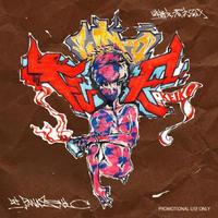 DJ PANASONIC [Fu Who Fu Vol.1] CD-R