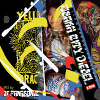 DJ PANASONIC  [OSAKA CITY DIESEL MIX Vol.2]  CD