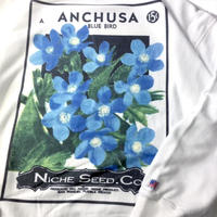 niche.USA / Flower Seeds Crew Neck Sweat - ANCHUSA