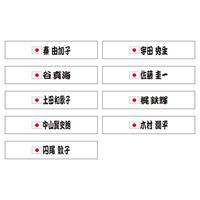 日本代表応援タオル(パラトライアスロン)