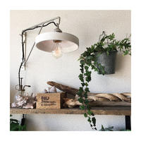 Sagger Wall Lamp