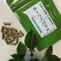 ずっと5%OFF!【定期お届けコース】ホーリーバジルサプリ16.8g(280㎎×60粒)×2袋