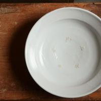 長野大輔さん 半磁器 7寸鉢