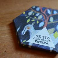 USHIO  CHOCOLATL ハイチ(スムース)