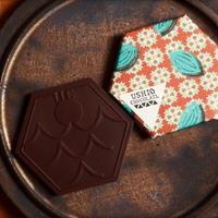 USHIO  CHOCOLATL カシューミルクチョコレート