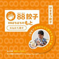 88ぱちぱち餃子のもと(にんにくあり)【全国冷凍配送】
