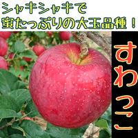 りんご『すわっこ』蜜たっぷりシャキシャキ新品種!【贈答用3kg箱入】