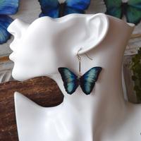ディダミアモルフォのピアス new turquoise.col 2Ssize(片耳用)