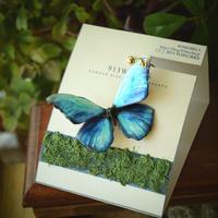 蝶のイヤリング メネラウスモルフォaqua plus.col 2Ssize (片耳用)