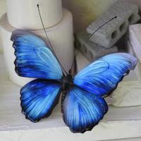 メネラウスモルフォのオブジェ blue.col Lsize