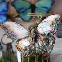 蝶のマグネット メネラウスモルフォ  corrosive Lsize
