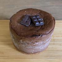 チョコレート チーズケーキ9cmギフトボックス入  のコピー