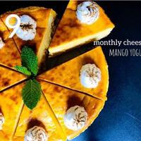 マンゴヨーグルトチーズケーキ