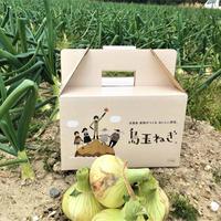 ヒシイケ家の淡路島産・島玉ねぎ 2.5kg(新玉)