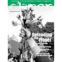 CLAMOR #11 Magazine (Clarmor)