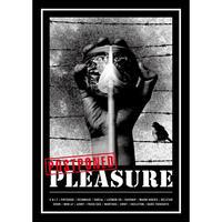 POSTPONED PLEASURE - compilation CD + Zine (Vox Populi)
