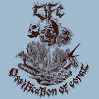 LiFE - Ossification Of Coral + Bonus Track CD (Black Konflik)