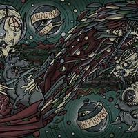 "GRINDING HALT / DRAINLAND - split 10"" (Shove)"