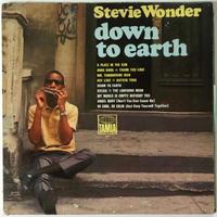 Stevie Wonder – Down To Earth