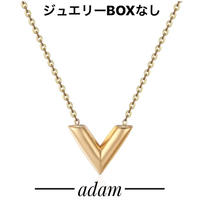 luxury V necklace