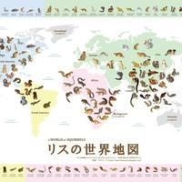リスの世界地図(A2ポスター)【りすマニア】