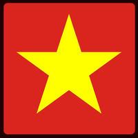ベトナムの黄色の実コーヒー